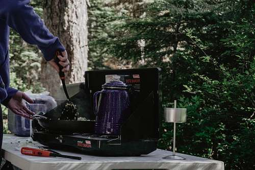 people purple electric kettle on stove person