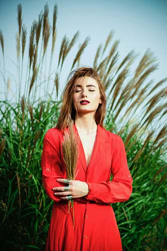 person woman holding brown wheat near green grasses people