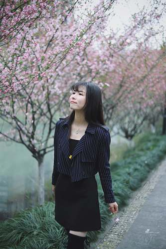 person woman walking on a road with cherry blossoms people