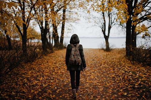 people woman walking on pathway with falling leaves near body of water during daytime person