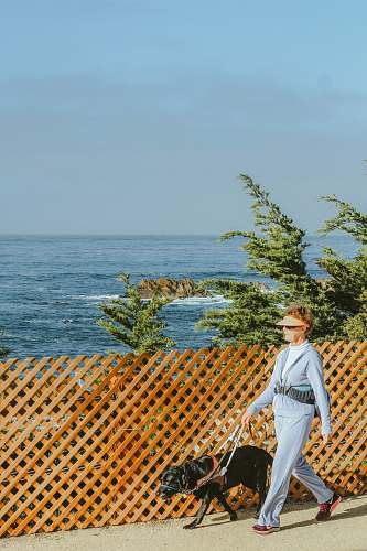 person woman with dog walking beside lattice fence people