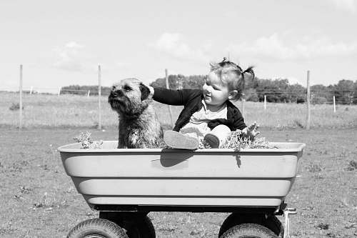 black-and-white girl holding puppy on wagon toy dog