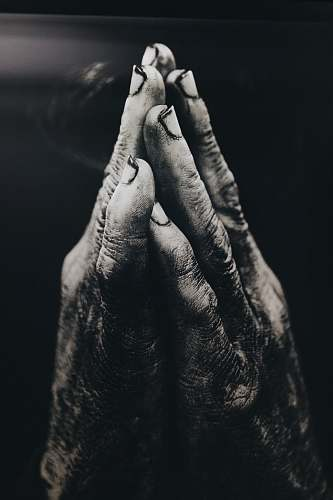 human grayscale photography of praying hands person