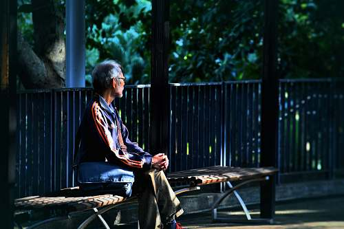 human man sitting on wooden bench person