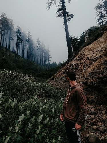 human man standing alone in forest at daytime person