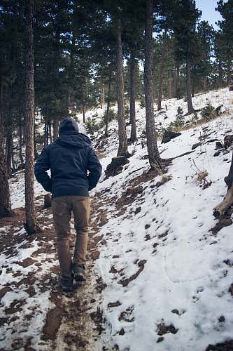 person man wearing black hooded coat walking under trees with snow during winter nature