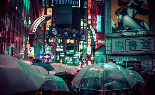 umbrella many people using umbrella during nitght time japan