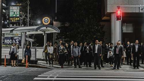 road people standing in front of pedestrian lane during daytime tokyo