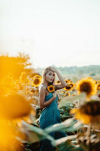 human shallow focus photography of woman holding yellow sunflower person