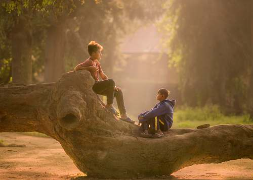 human two boy's sitting on log person