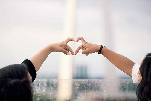 person two person doing heart hand sign during daytime human