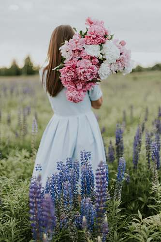 person woman carrying flowers flower