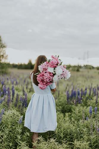 human woman carrying pink and white flowers person