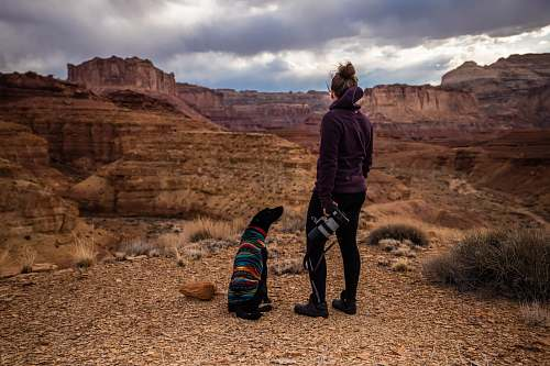 people dog looking up on woman wearing black hoodie looking at brown canyon hills human