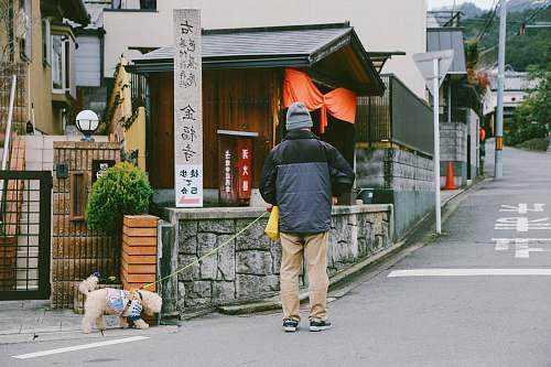 human man with dog walking on street during daytime people