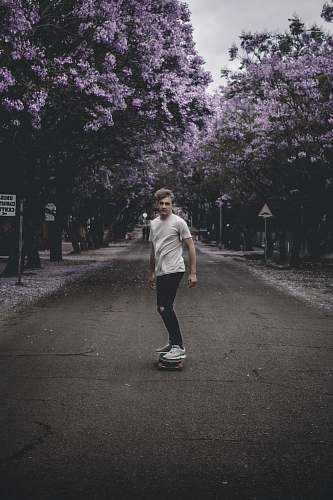 human person skating on gray concrete top road near purple leaf trees people