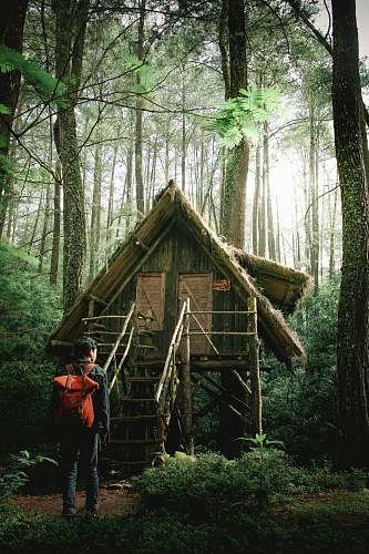 human photo of man standing infront of green wooden bungalow in the middle of forest people