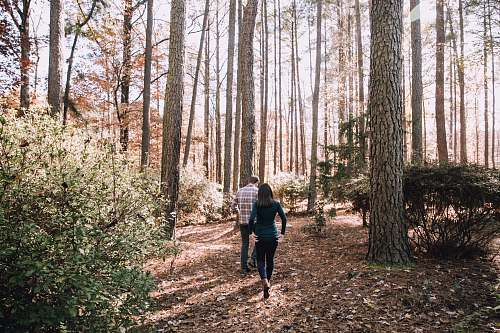 human woman and man walking under tall trees people