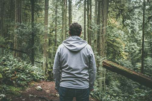 outdoors man in gray hooded jacket standing on dirt road between trees during daytime nature