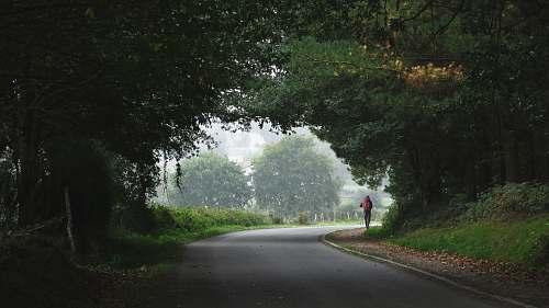 tarmac person walking towards trees road