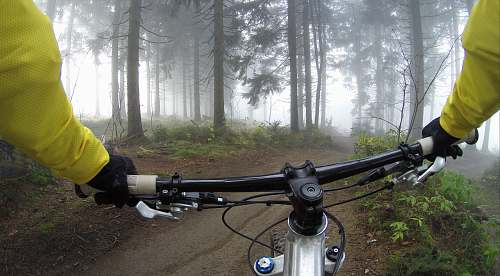 woods person riding on mountain bike in forest during foggy day sport