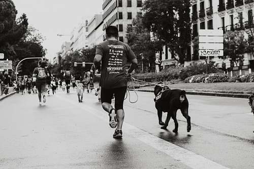 person person running with dog at the road human