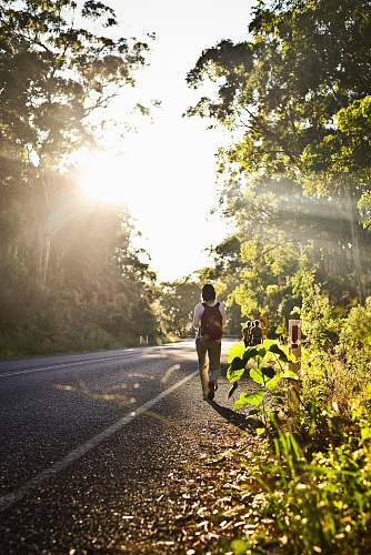 road person carrying backpack walking in road beside trees fitness