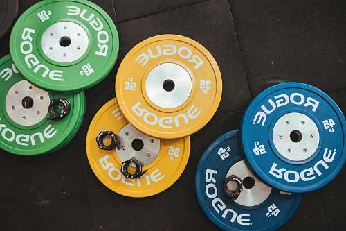 muscle three pairs of assorted-color Rogue bumper plates muscles