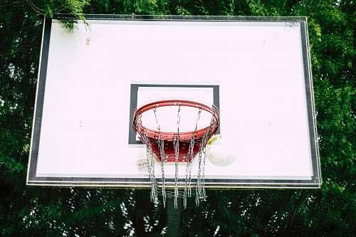 display basketball hoop in front of trees electronics