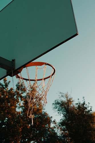 hungary black basketball hoop sport