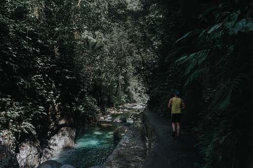 person man walking beside river near mountain during daytime nature