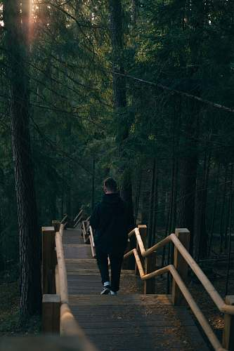 person man walking near trees people