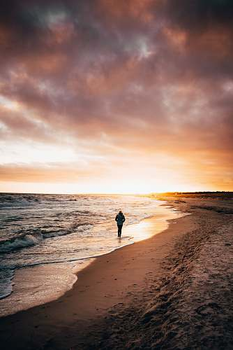 person person walking on seashore nature