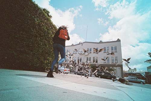 person person with orange backpack walking beside green plant topiary during daytime people
