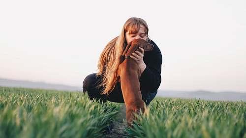 plant woman kissing adult brown dachshund grass