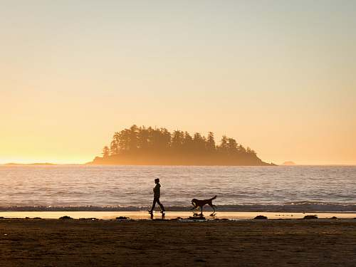 beach silhouette of person in front of dog walking at seashore near island during sunset water