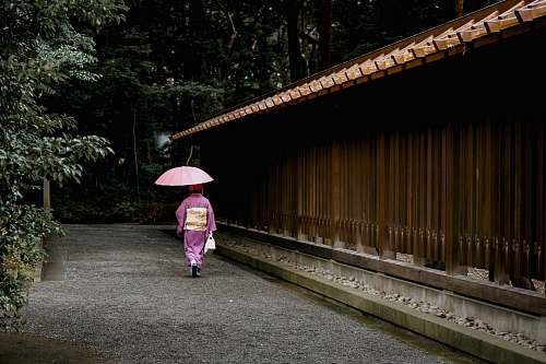 people geisha holding umbrella near fence umbrella