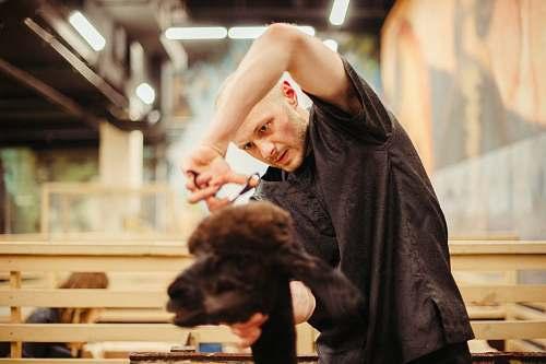 human man cutting hair of goat people