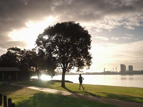 human person running beside tree sport