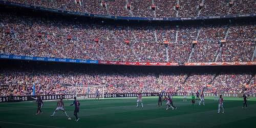 human soccer field stadium