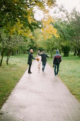 human thee people walking along a pathway between green trees walking