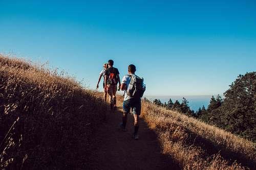 human three person hiking on mountain walking