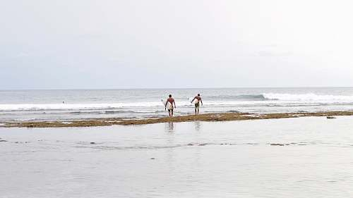 human two men holding white surfboards walking on seashore nature