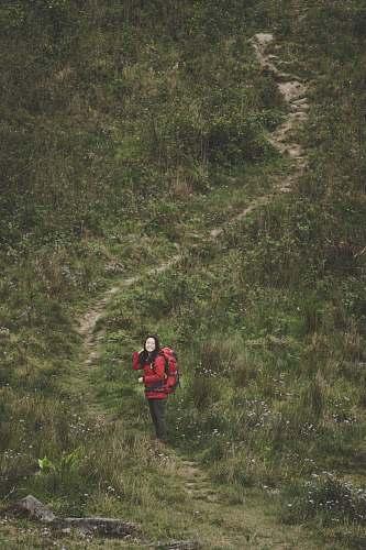 human woman walking on pathway between grass outdoors
