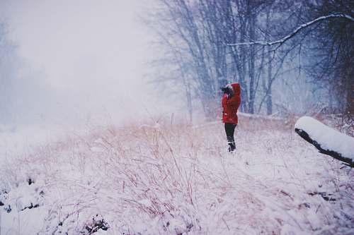 winter person standing wearing red coat near bare trees forest
