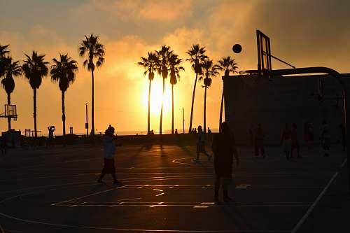 sun silhouette photo of people playing basketball during sunset beach