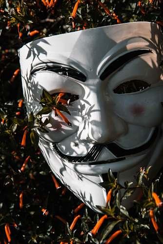 helmet Guy Fawkes mask on plant apparel